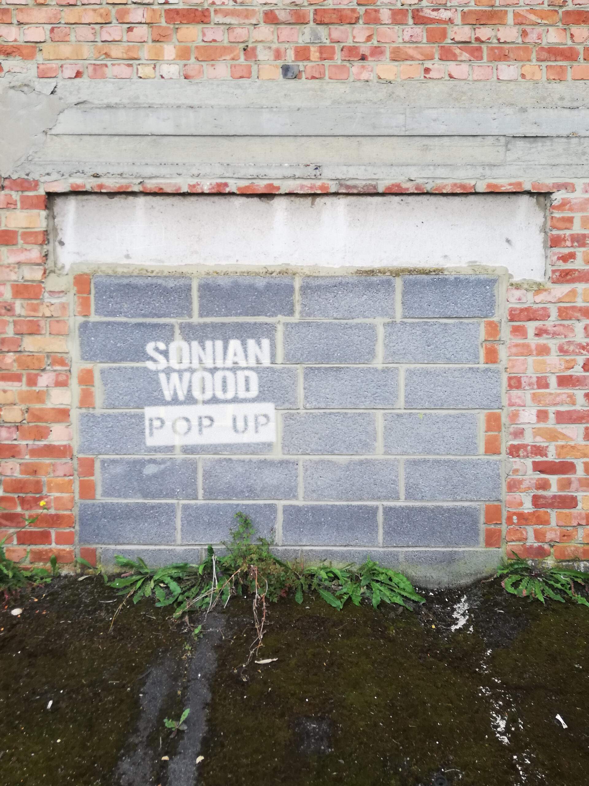 pop up local wood shop